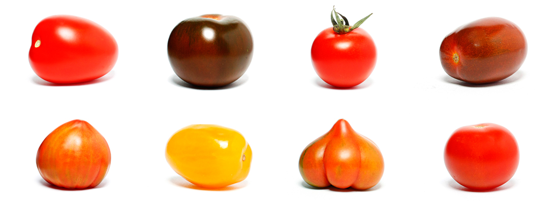 tomate1100x400